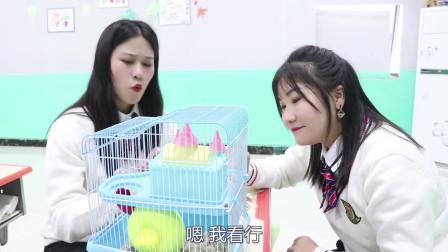 学霸王小九:老师让学生帮忙照顾小仓鼠,没想照顾的方法一个比一个奇葩,真逗