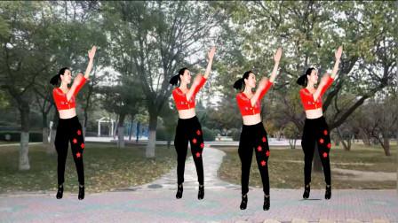 点击观看《2019驿城微笑无基础健身步子舞【风吹玫瑰花儿开,我的幸福还在等待】好听好看》