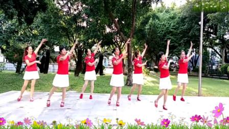 阿采广场舞《荞麦花》优美好看的32步