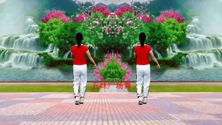 金社晓晓广场舞《多想抱抱你》背面演示,方便学跳