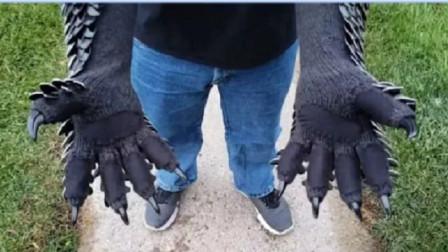老外发明穿山甲手套,鳞片一摸就往回缩太酷炫,难道是用来打洞?