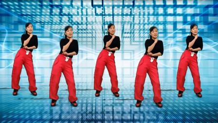 玫香广场舞《别知己》DJ版,正背面附教学