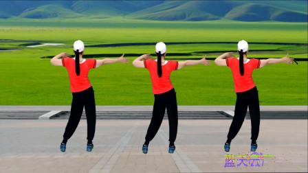 点击观看《蓝天云广场舞 健身操《哥哥今年三十多》背面》