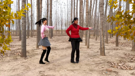 河北青青广场舞《真的没骗你》32步乡村风光实景双人版