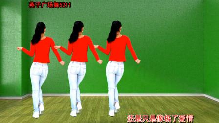 点击观看《燕子广场舞5211 48步广场舞《入戏又动心》免费分解动作》