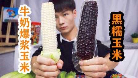 """能生吃的""""牛奶爆浆玉米"""",对比黑糯玉米,一口下去汁水喷脸上了"""