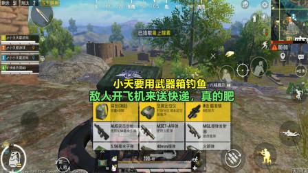 和平精英:小天要用武器箱钓鱼,敌人开飞机来送快递,真的肥!