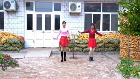 点击观看《河北青青广场舞 爱不停息 32步 双人舞》