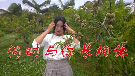 姑娘深情演唱一曲《何时与你长相依》DJ版,感动多少痴情人!