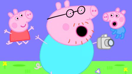 哈哈,乔治游泳比赛获得了第一名 乔治可真厉害 小猪佩奇游戏