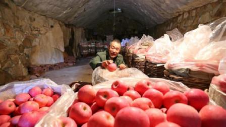 河南56岁大哥用土培房建大冷库,水果能存放5个月,吃着还是脆的