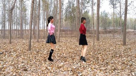 点击观看《河北青青广场舞《迷茫的爱》踩点练习16步》