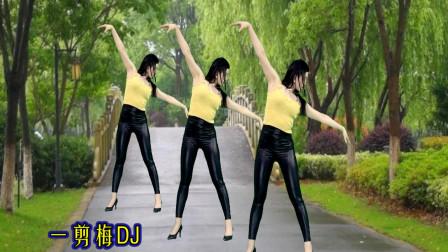 点击观看《青青世界最潮广场舞一剪梅DJ 中年大姐舞蹈视频》