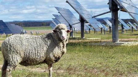 太阳能发电站的世界难题,看看中国是怎么解决的,太聪明了!