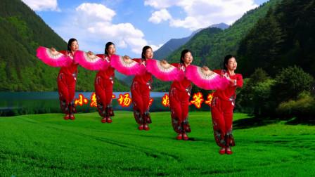 小慧广场舞《妹妹等等我》中年大姐扇子舞教程分解 无基础好学