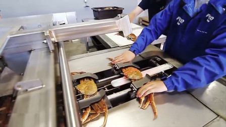 实拍德国的螃蟹处理器,真乃神器,中国吃货:毫无灵魂