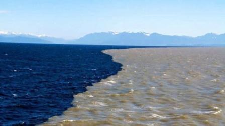 为什么太平洋和大西洋的海水不能相融,是井水不犯河水?