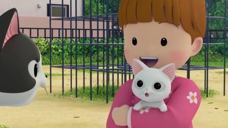 甜甜私房猫:不好了,小白白被姐姐带走了