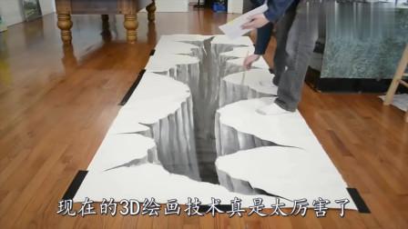 老外在地上画了一个3D大坑,就等着猫咪上场,看完憋住别笑