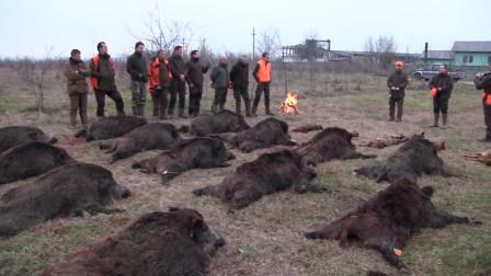 美国农民最恨的动物,一年损失70亿,网友:请出动中国吃货!