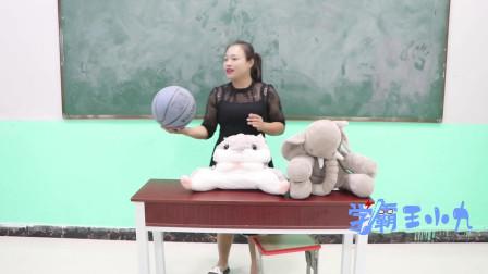 """学霸王小九短剧:学校举办拍卖会,没想男同学88元的高价拍得""""大象""""一只,太逗了"""
