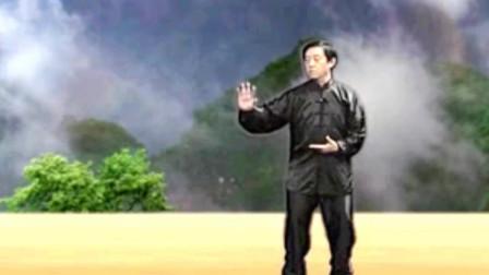 陈氏精要十八式太极拳教学