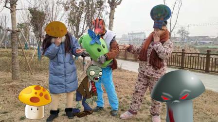 寒冰豌豆被僵尸吃掉,蘑菇姐妹联手复仇,僵尸装晕逃过一劫