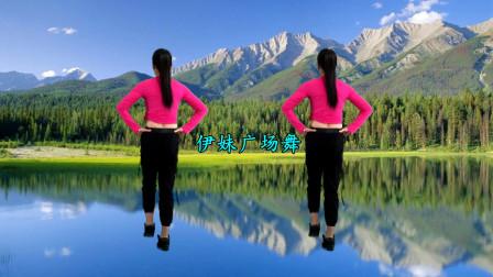 简单健身操教程《草原儿女唱情歌》鹤塘紫儿背面慢动作分解