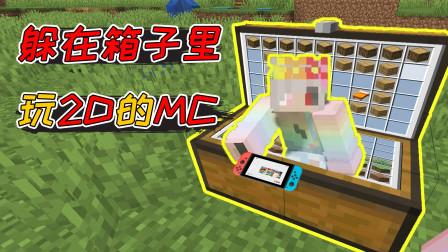 我的世界:2D版的MC你见过吗?躲在箱子里玩MC!