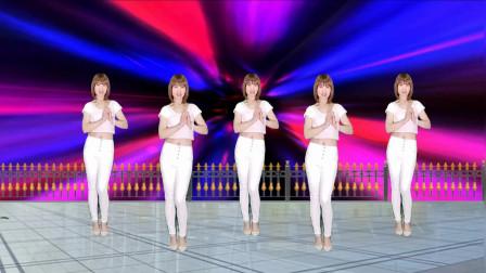 驿城微笑 精选入门舞找不到北 中老年人喜爱跳的舞蹈视频