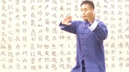 点击观看《陈自强陈式太极拳演练精华》