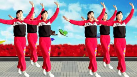 点击观看阿真最新教学广场舞《过年过年》欢快喜庆好看附分解视频