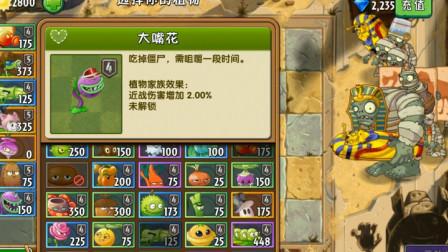 植物大战僵尸:给大嘴花搭配什么样的辅助植物,比较合适?
