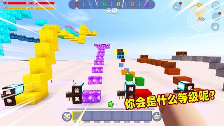 迷你世界:等级酷跑!小蕾从傻子跑到王者,你是什么等级呢?