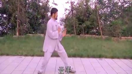 点击观看《陈式太极拳实用拳法基本功讲解教学 陈中华太极讲解》