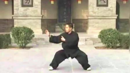 点击观看《陈式太极拳新架二路炮锤 演练:陈自强》