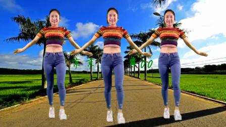 广场舞《爱到流泪谁的罪DJ》网红弹跳32步简单易学