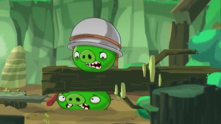 趣味动画:小猪的生日