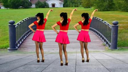 点击观看《鹤塘紫儿广场舞 时尚流行32步《走不出你的爱》》