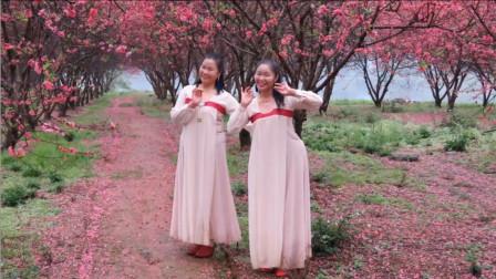 广西柳州彩虹健身姊妹花《你像三月桃花开》古典舞 编舞:无边