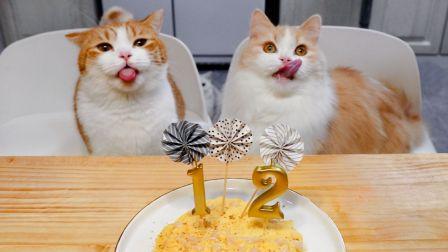 给猫咪做生日蛋糕,再简单吃个帝王蟹火锅!【花花与三猫】