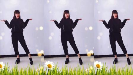 点击观看《网红舞蹈《一生与你擦肩而过》 云豫风采广场舞》