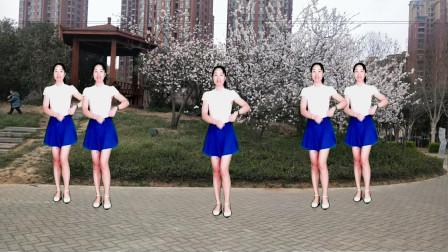 点击观看《驿城微笑广场舞 DJ版32步迪斯科 简单易学一学就会》