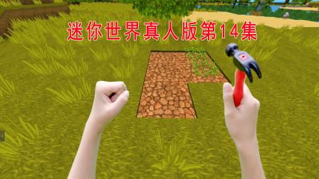 迷你世界真人版14:解决自身的温饱问题,开始种菜