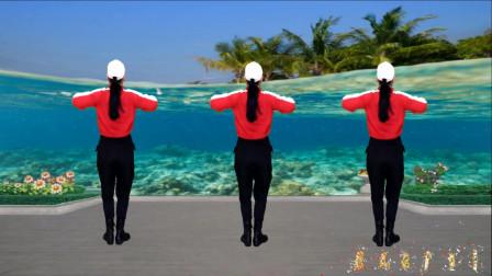 点击观看《蓝天云广场舞 健身操《唐人》背面演示》