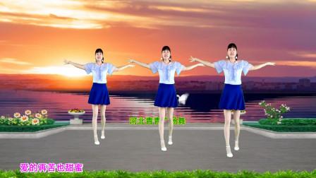 点击观看《河北青青广场舞《爱的再苦也甜蜜》》