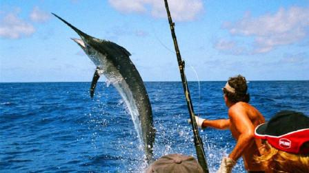 男子站在船头钓鱼,不料剑鱼一跃而上,下秒悲剧发生