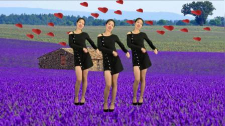 点击观看《鹤塘紫儿广场舞《爱情堡垒dj》64步,美美哒》