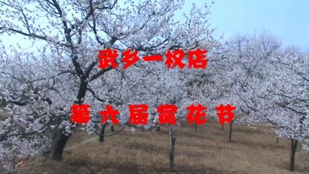 山西省长治市武乡县故城镇权店村第六届梅杏赏花节