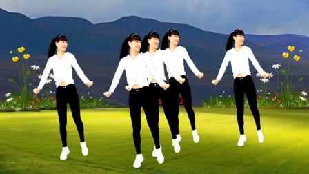 点击观看《燕子广场舞5211 来一支柔情版鬼步舞《桥边如花》》